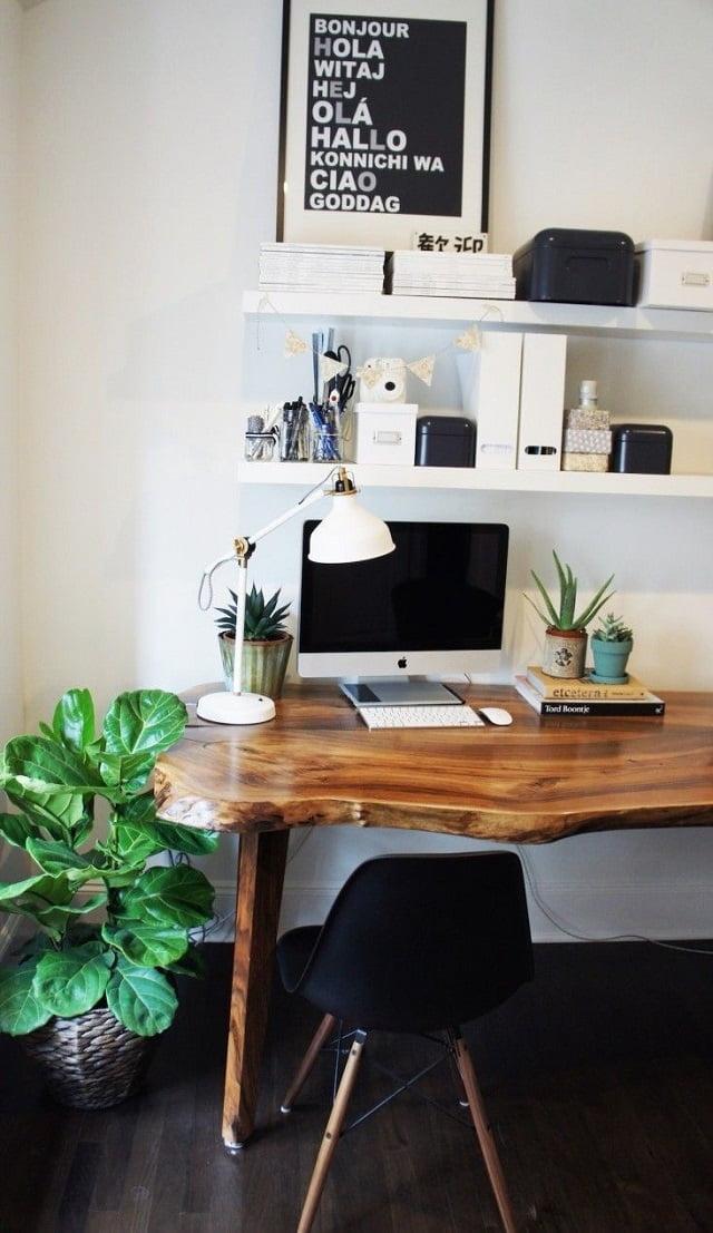 Không gian làm việc mơ ước của mọi nhân viên - Cây cảnh cho phòng văn phòng
